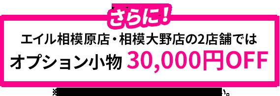 オプション小物30000円OFF